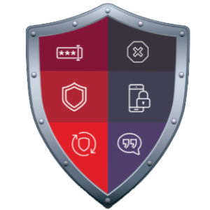 shield divided into multiple sections representing different cybersecurity concepts: passwords, updates, locking phones, and protecting from viruses